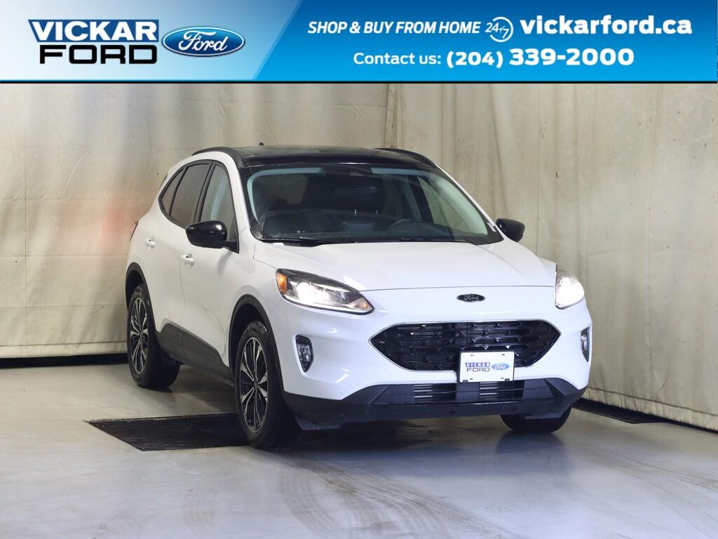 2021 Ford Escape SEL AWD 2.0L